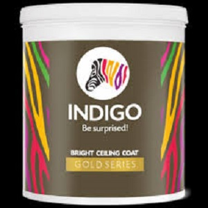 Indigo Paints IPO opens for subscription today